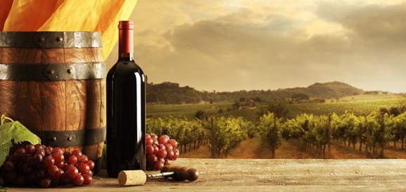 Viaggio-territori-vino